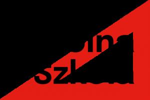 Logo-akcji-czarny-napis-300x200